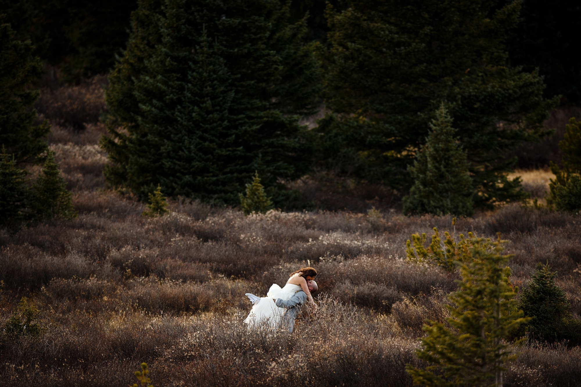Franks kisses Heidi in a field during their Breckenridge Boreas Pass wedding