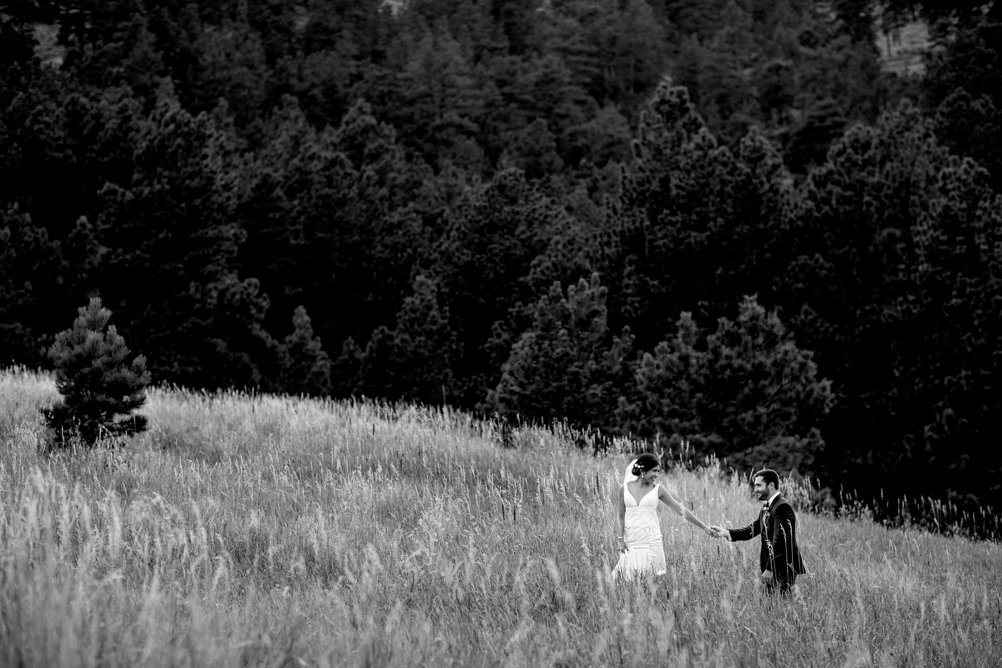Megan pulls Bryan up the hill in the long grass at Centennial Park Trailhead in Boulder