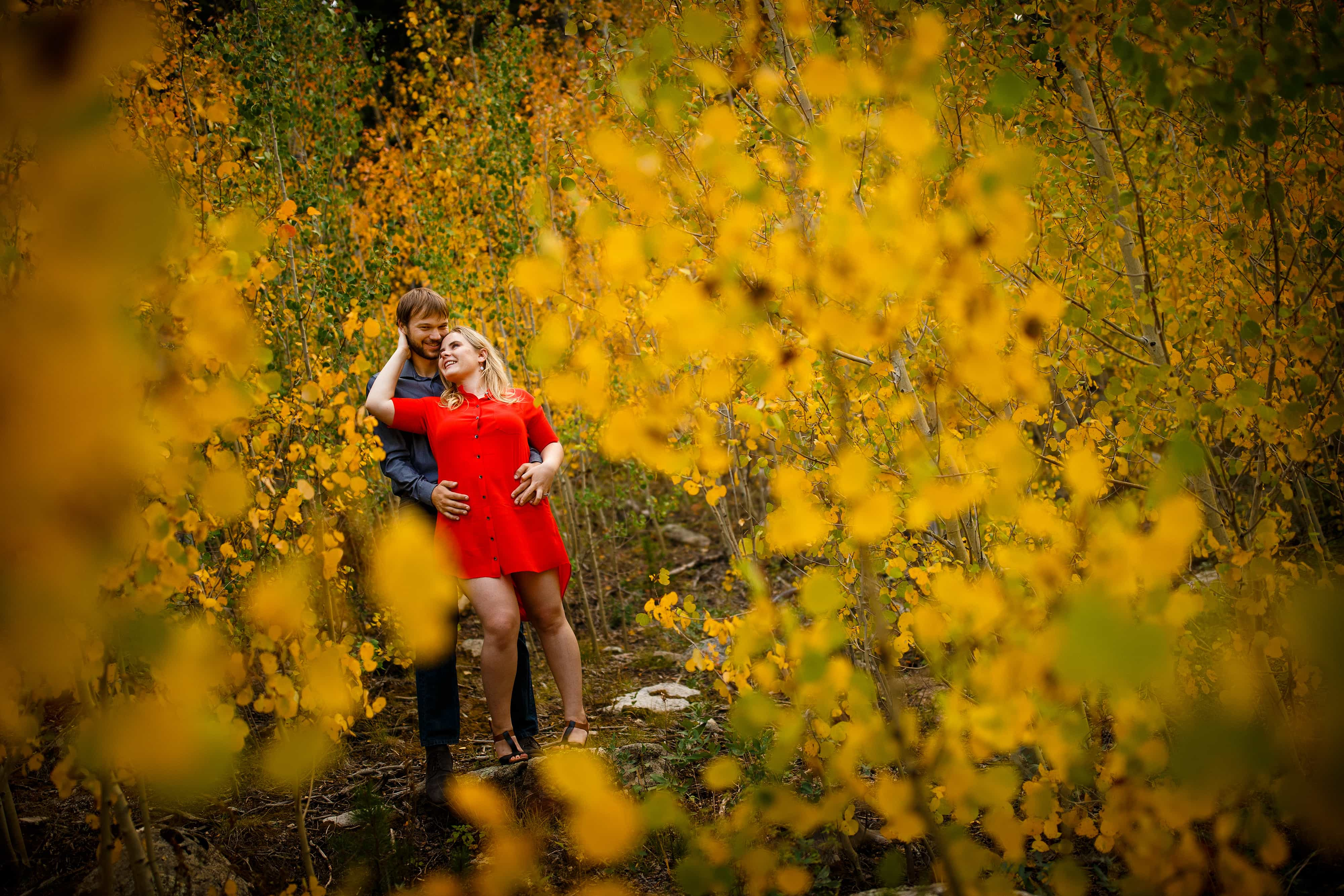 Joel and Coza share a moment together in a grove of aspen trees along Gap road in Golden Gate Canyon State Park during their fall Golden engagement