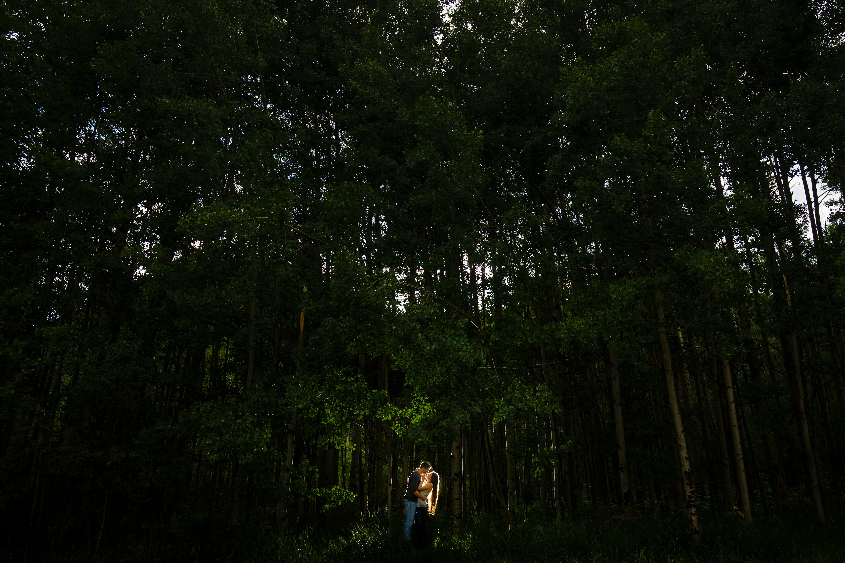 A couple poses in a grove of aspen trees at Meadow Creek Trailhead during their Frisco engagement session