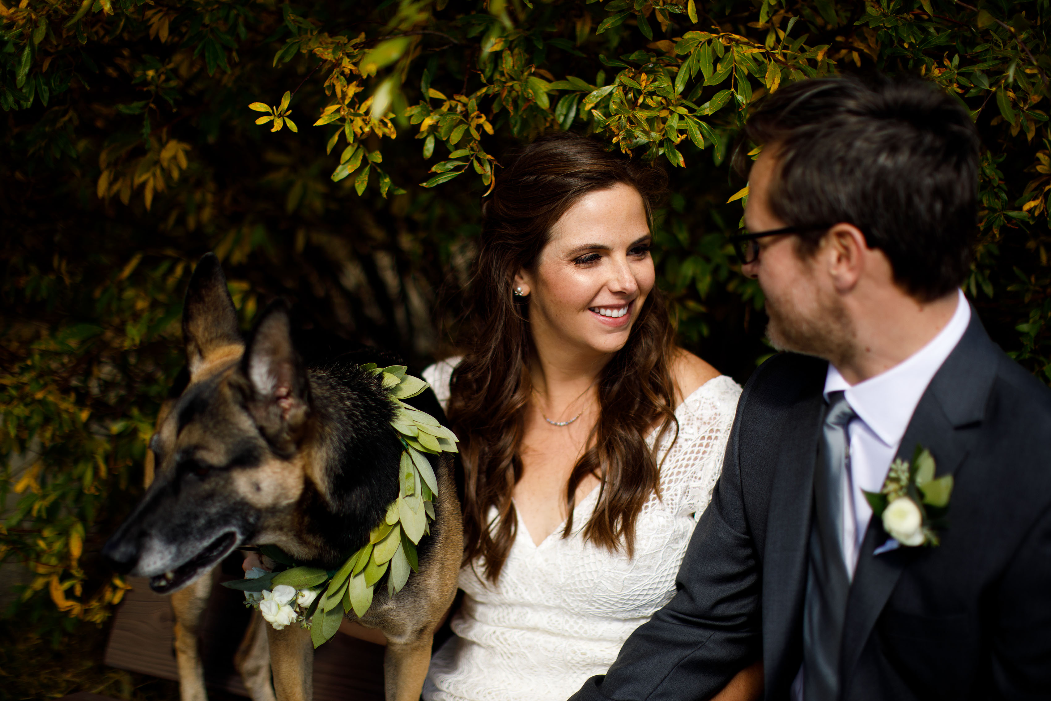 The couple share a moment as their dog wears a floral dog collar before the wedding