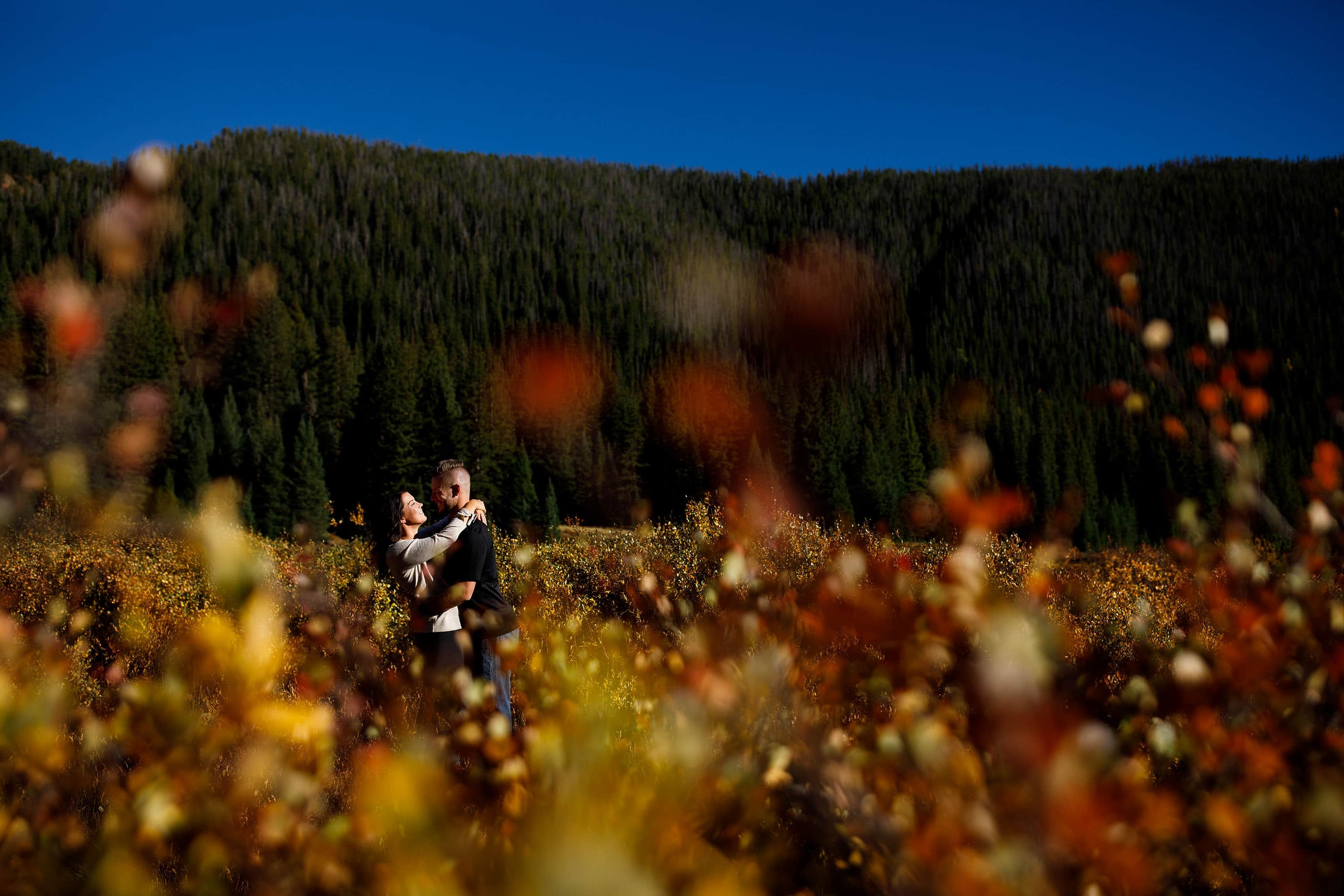 Caroline and Brendan embrace in a grove of fall color near Vail