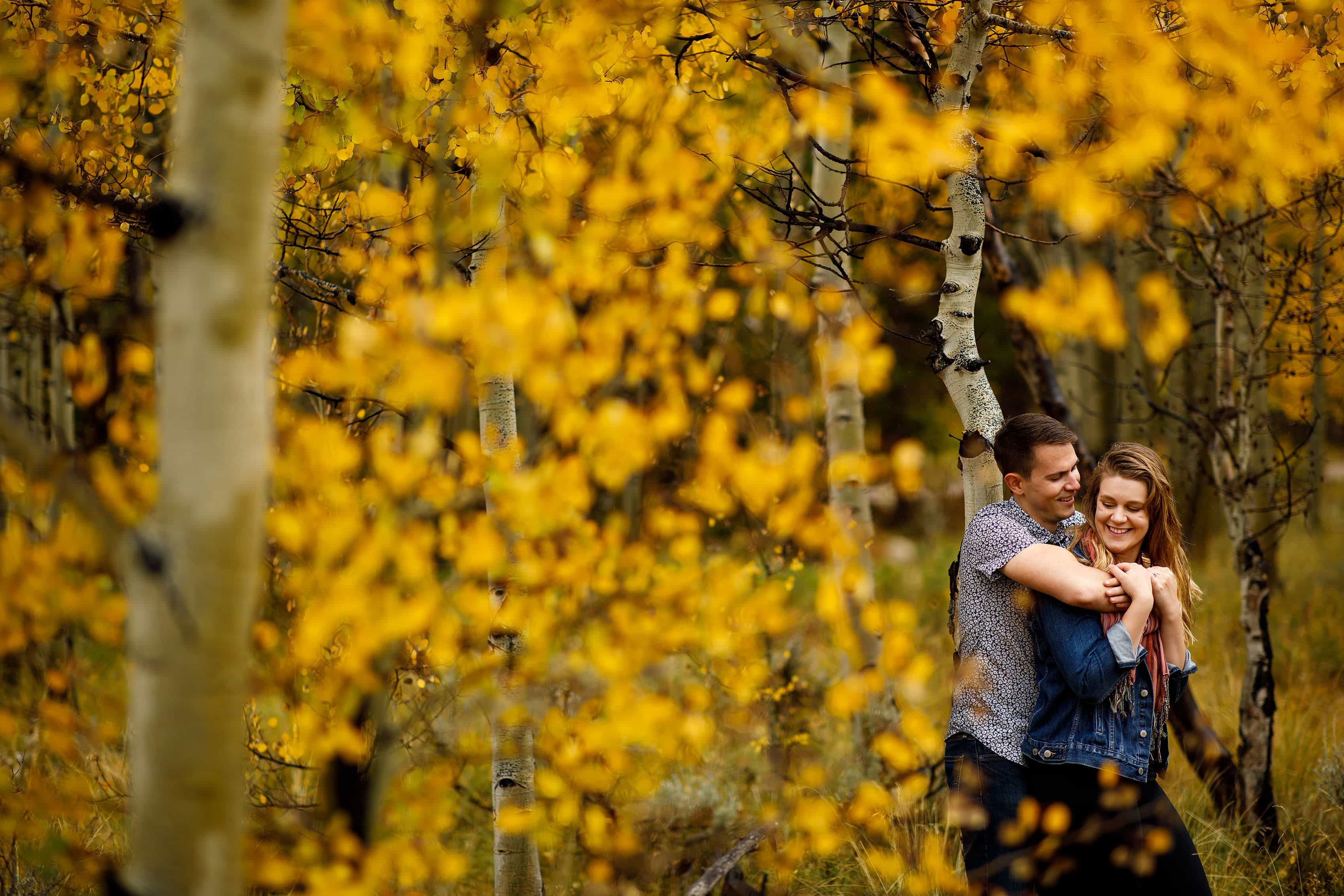 Hayden and Holly are surrounded by yellow aspen trees in Frisco Colorado during their engagement session