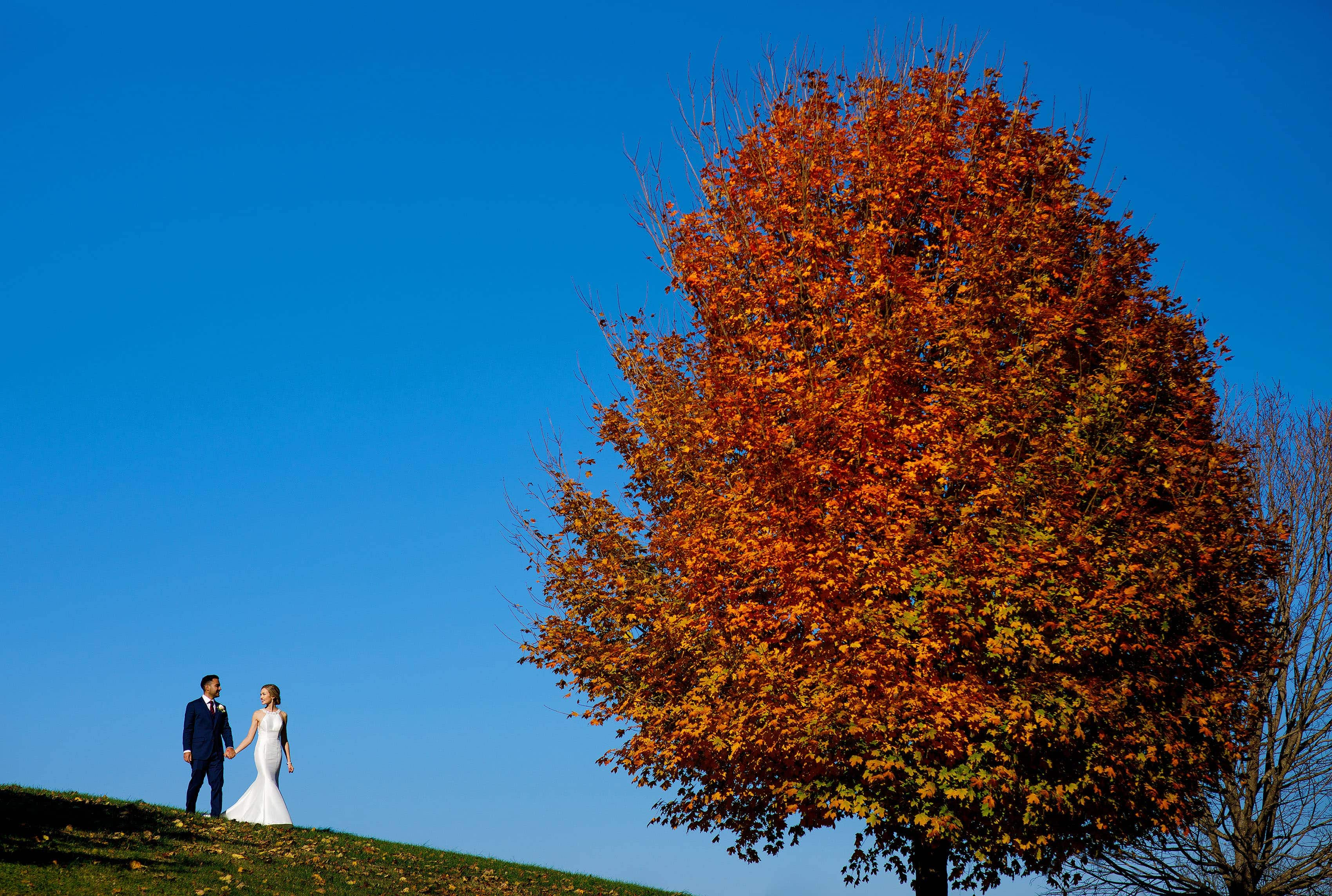 Richie and Ashley walk together under a orange tree near the Round Hill Inn before their fall Madison at the Mill wedding in Orange, Virginia