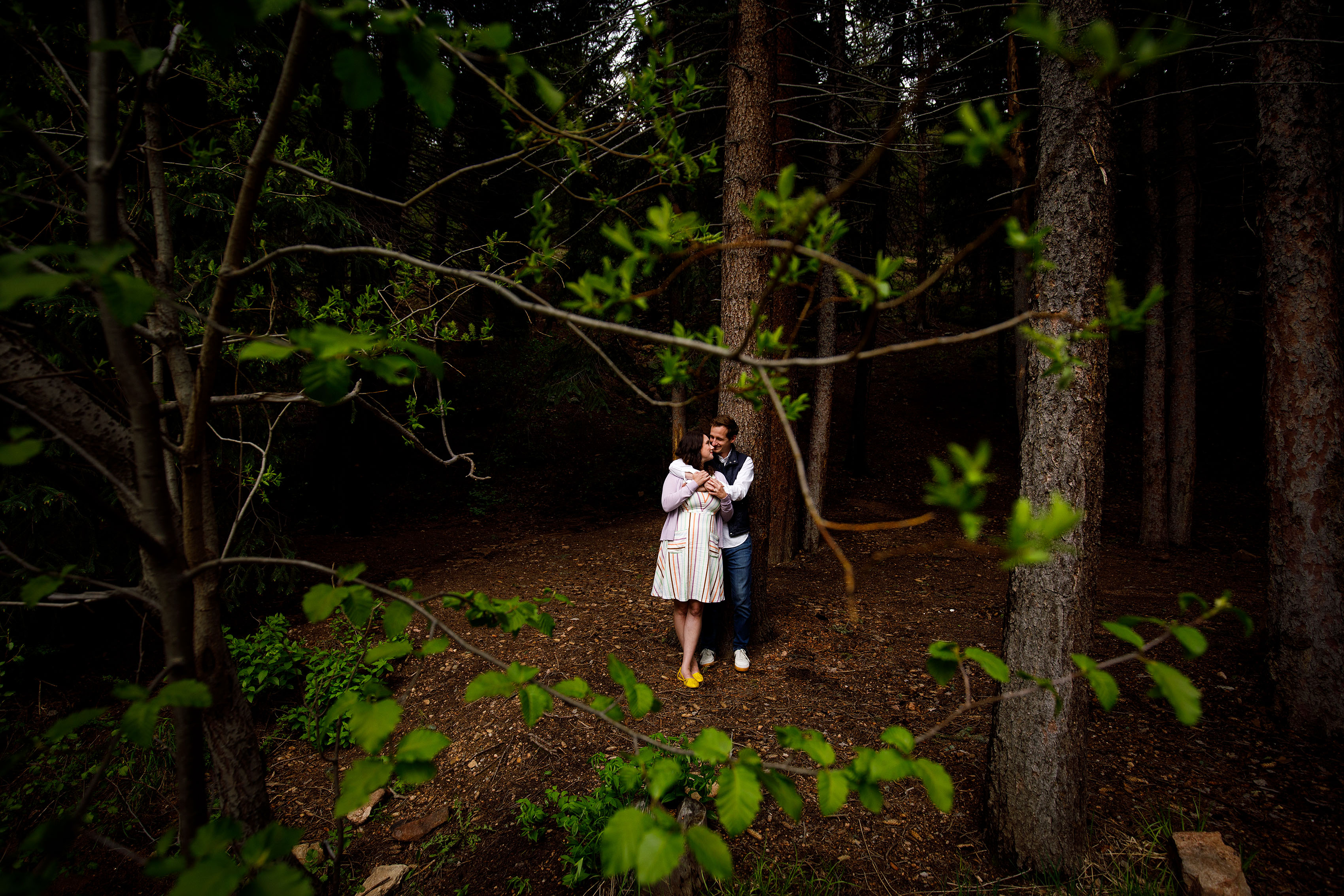 Meaghan and Matthew share a moment together in the pine trees near Maxwell Falls trail in Evergreen