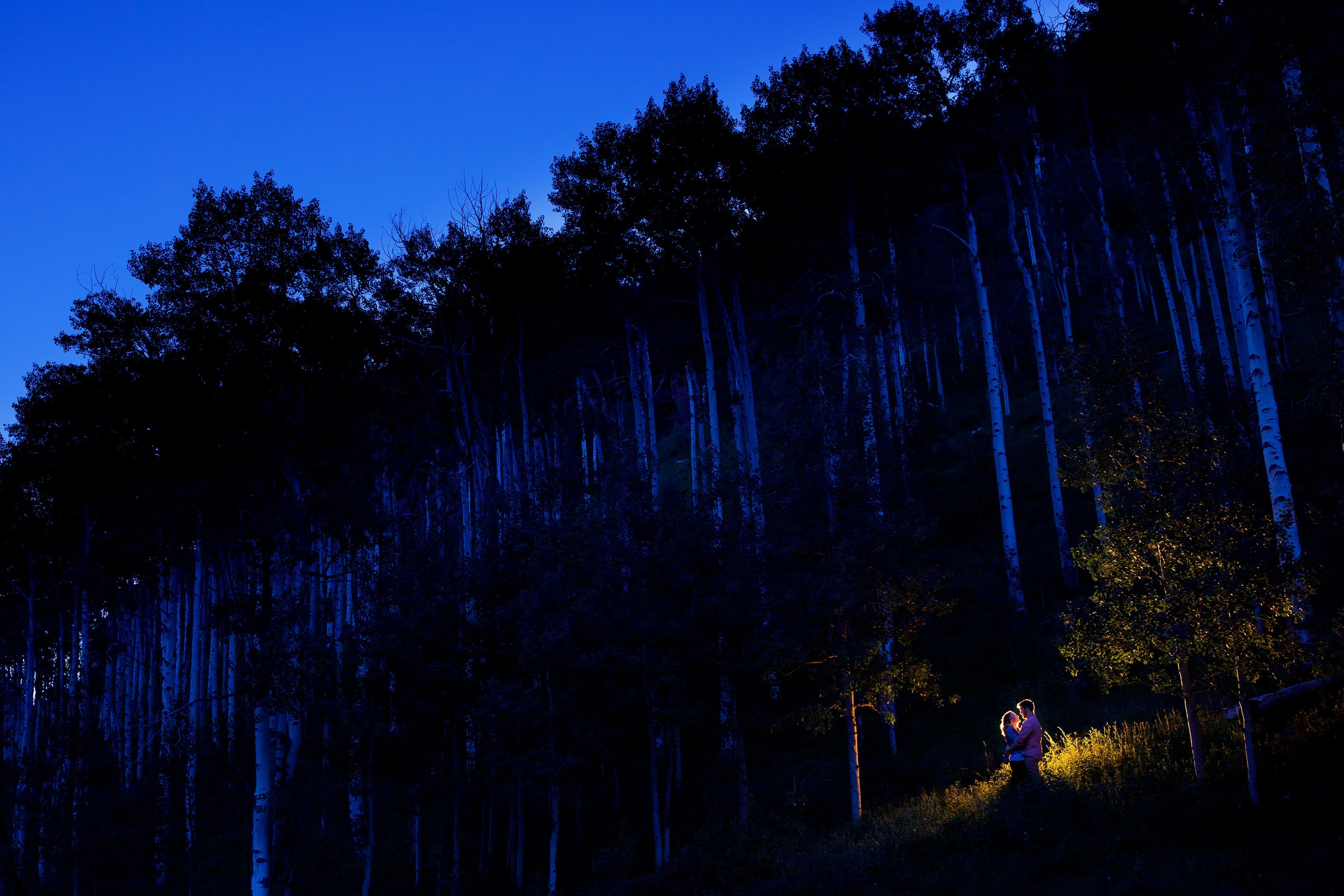 Twilight engagement in the aspen trees at Piney River Ranch near Vail, CO