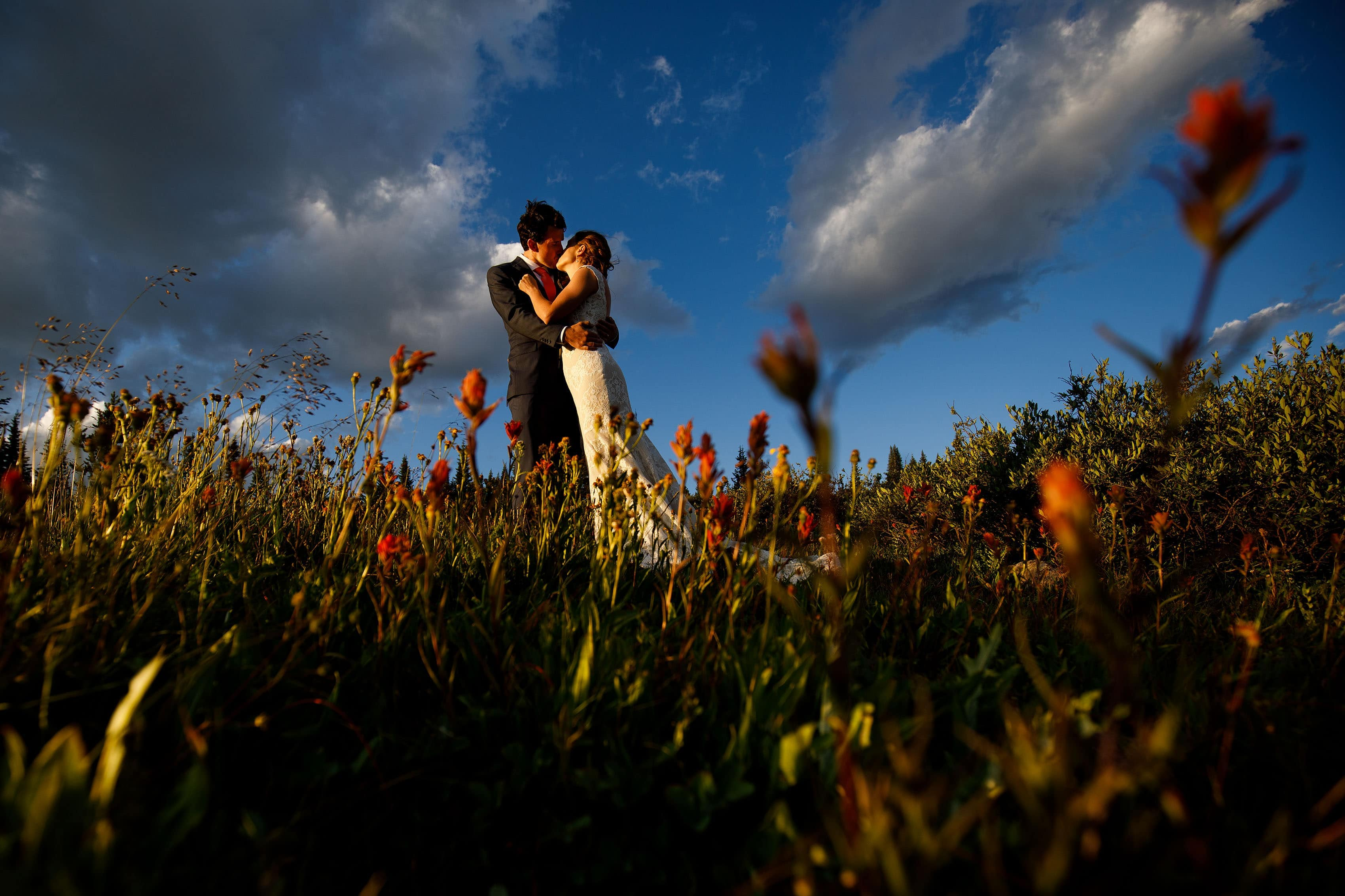 The bride and groom kiss in a grove of wild Indian Paintbrush flowers on Shrine Pass