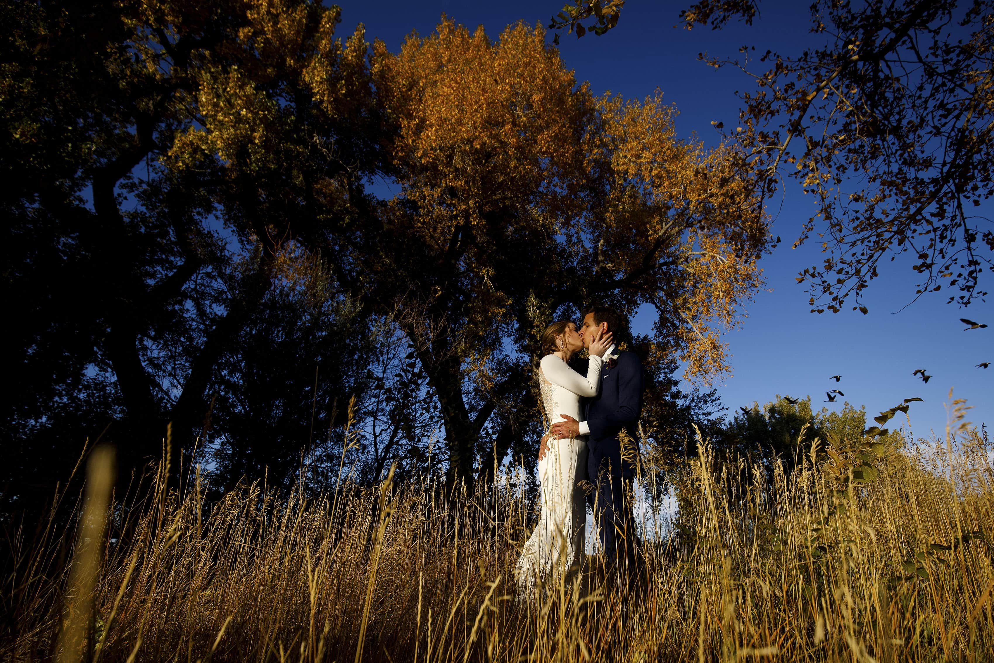 The bride and groom share a kiss under a tree and blue sky on their wedding day at The Vista at Applewood Golf Course
