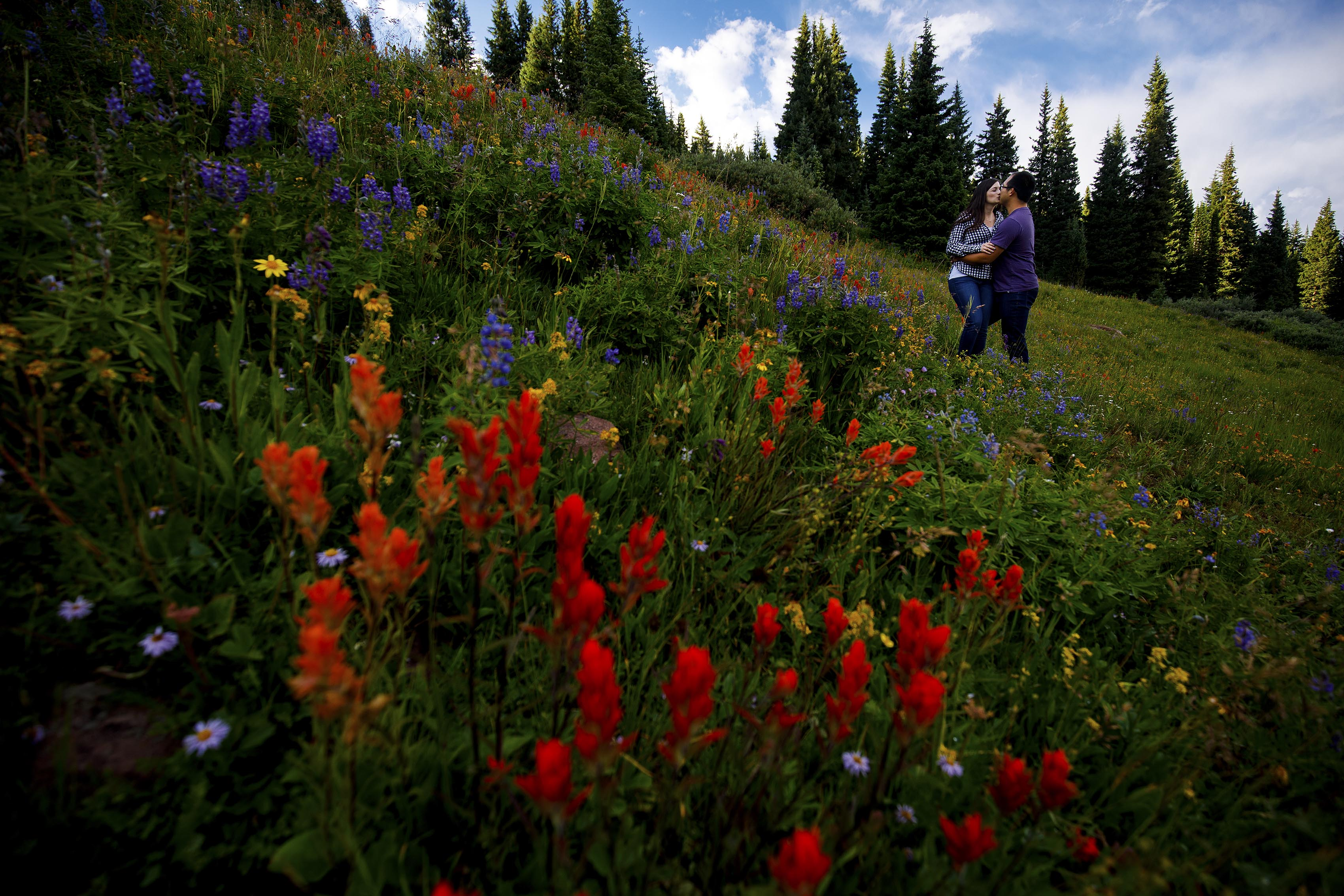 A couple shares a kiss in a field of colorful wildflowers near Shrine Pass during their Colorado mountain engagement
